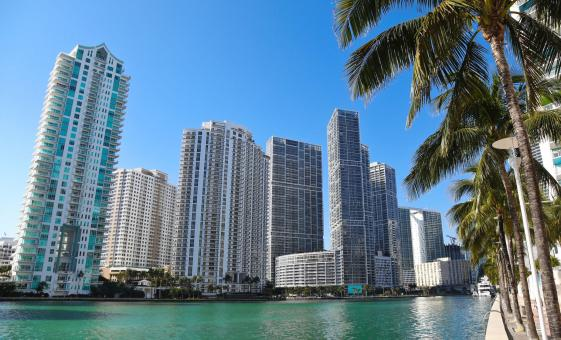Miami Sightseeing, Bayside, and Biscayne Bay Cruise Tour (Coral Gables,  Bayside Marketplace)