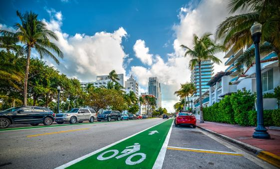 Miami Sightseeing Tour (South Beach, Downtown, Little Havana, Art Deco District)