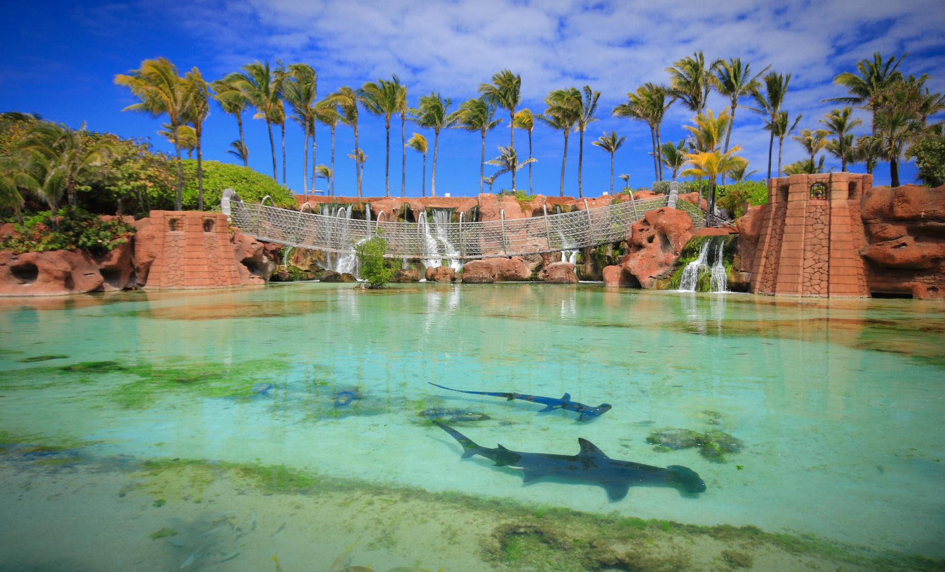 Discover Atlantis in Nassau