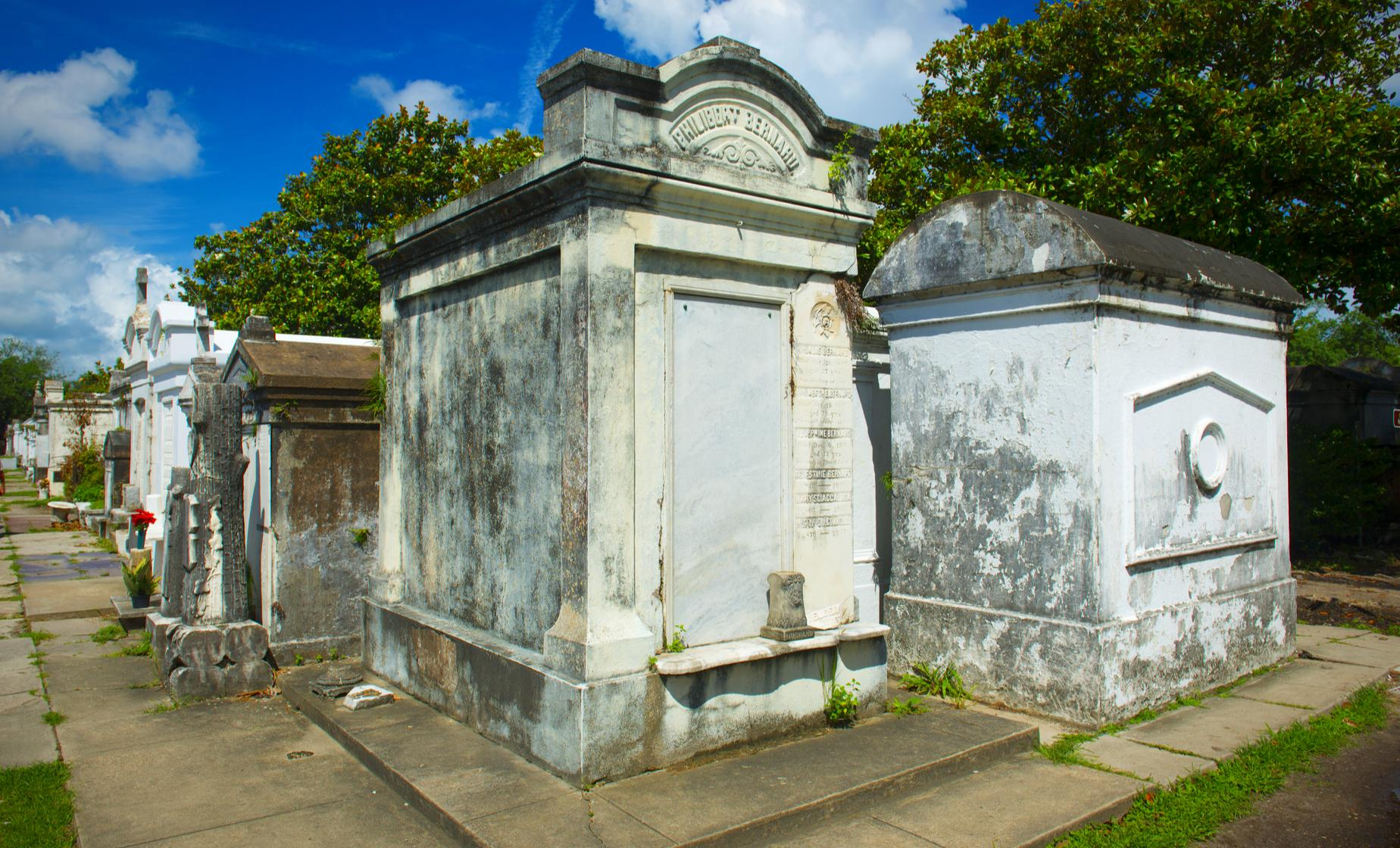 New Orleans City and Cemetery Sightseeing Tour (Crescent City, French Quarter)