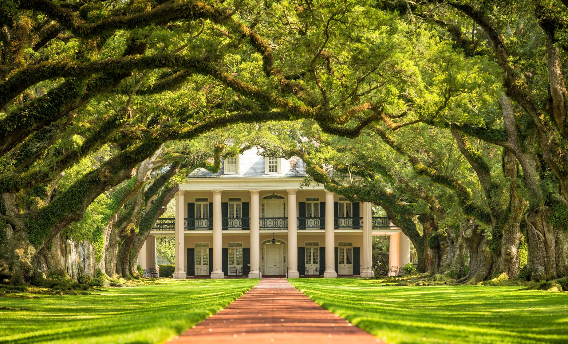 Laura Plantation and Oak Alley Tour