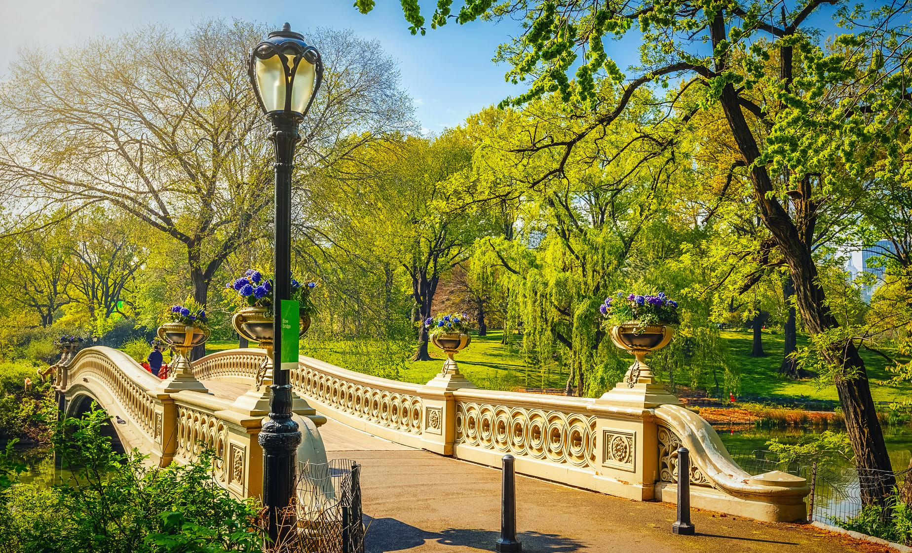 Central Park Movie and TV Sites Tour in New York (Bethesda Terrace, Cherry Hill, Strawberry Fields)