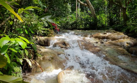 Dunns River Falls in Ocho Rios and Area Highlights (Shaw Park Lookout, Spice Mountain)