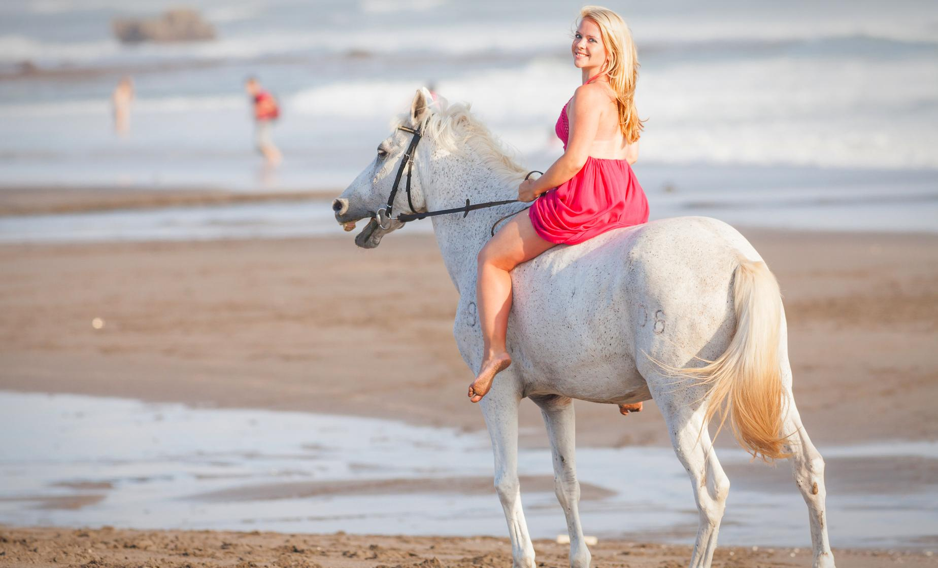 Beach Horseback Ride and Tubing Tour in Ocho Rios