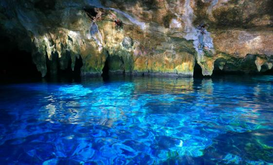 Private: Exploration of 7 Cenotes