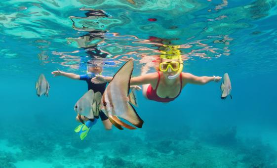 Roatan Kayaking & Snorkeling Combo Excursion with Turquoise Bay Resort