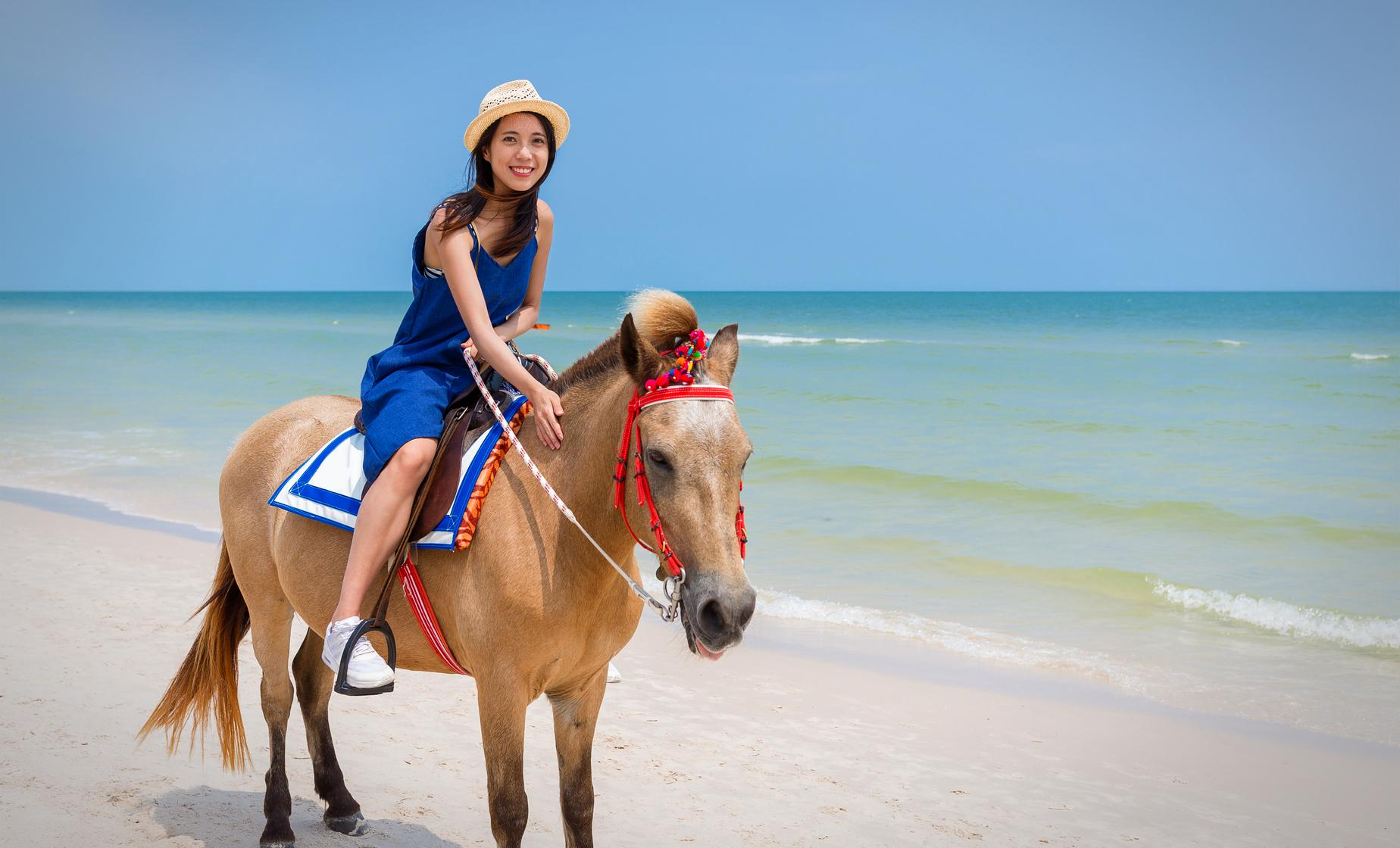 Private In Depth by Horse Tour in Samana (El Valle Beach, Lulu Waterfalls)