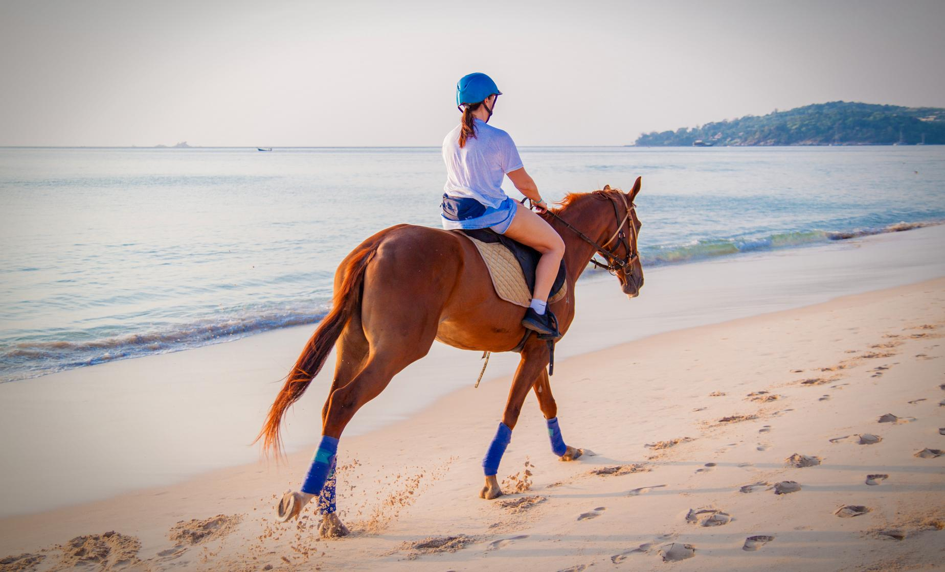 Horseback Riding, Zip, Waterfall and Lunch Tour in Samana