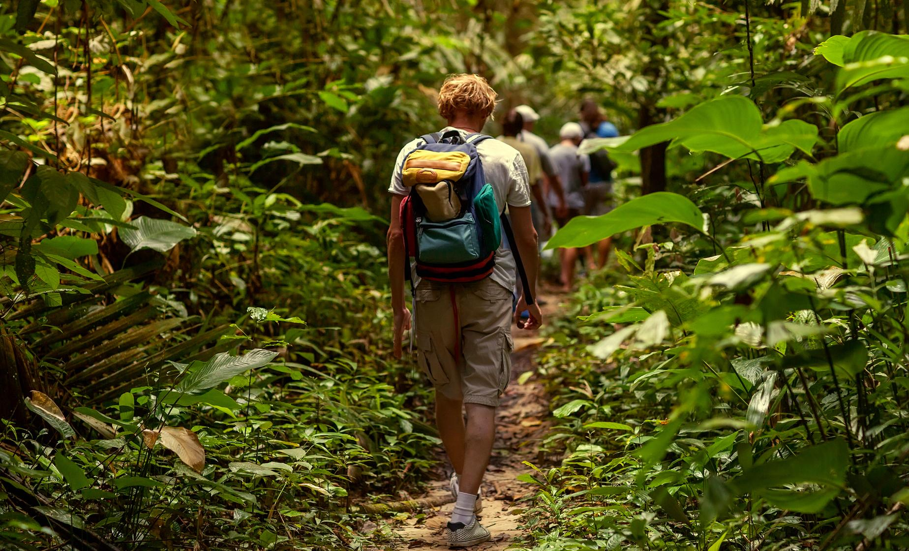 St. Kitts Rainforest Hike