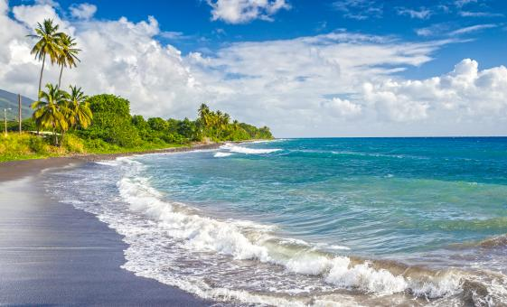 Nevis Nature Walk and Beach