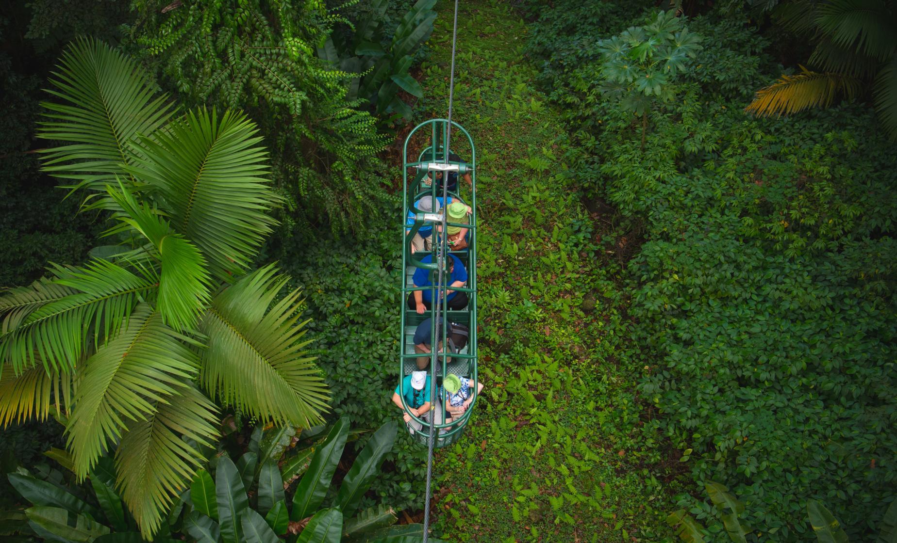 Aerial Tram Adventure