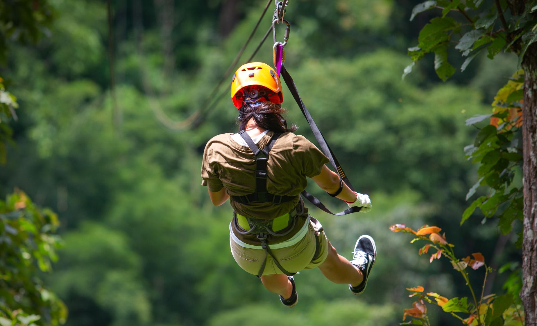 Rainforest Sky Rides Port Tour with Aerial Tram & Hiking in St. Lucia
