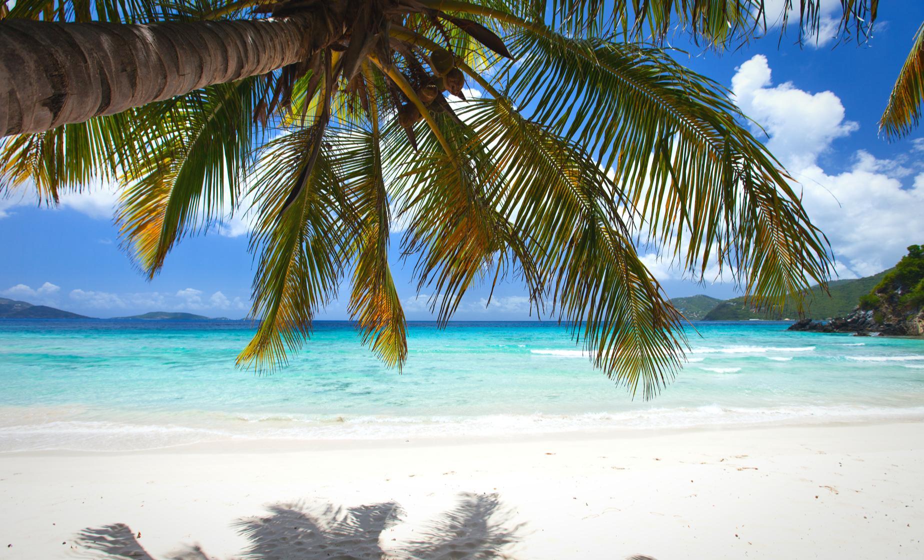 Tortola Beach Day