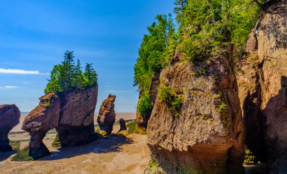 Private Top 10 Highlights and Bay of Fundy