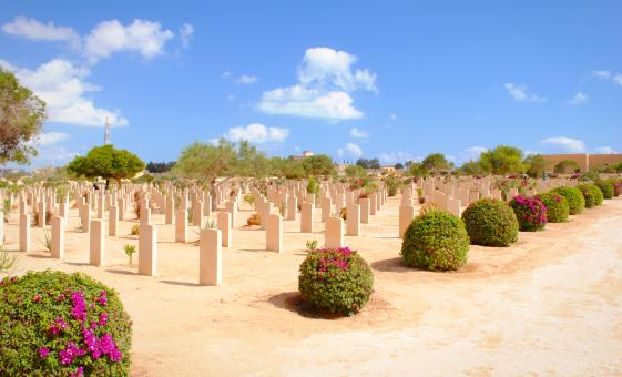 Private El Alemein Tour from Alexandria (Alemein War Cemetery, Military Museum)