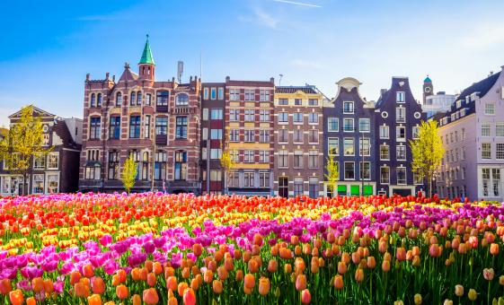 City Sightseeing Hop On and Hop Off Bus and Boat Tour in Amsterdam (Royal Palace)