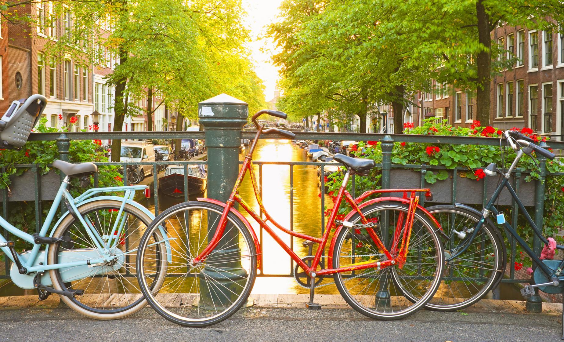 Big City Bike Tour