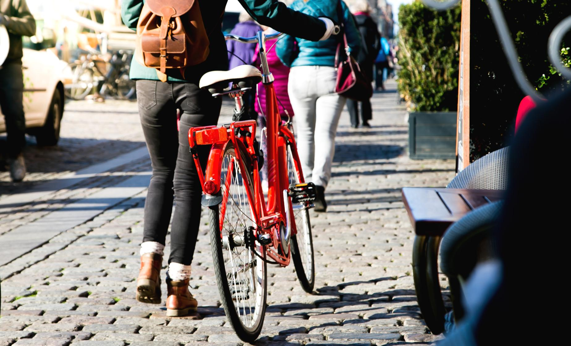 Comprehensive Copenhagen Tour by Bike