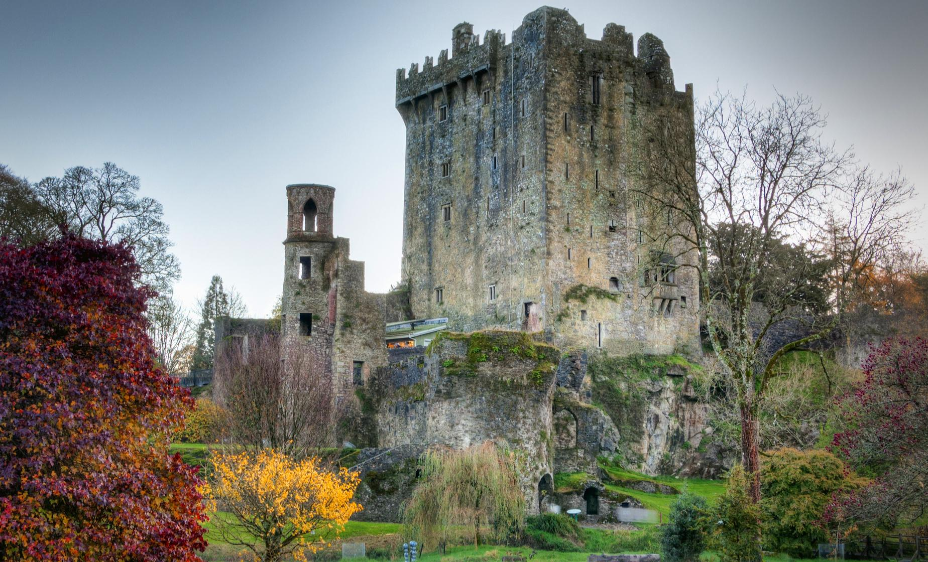 Cork City and Blarney Castle with Private Transportation