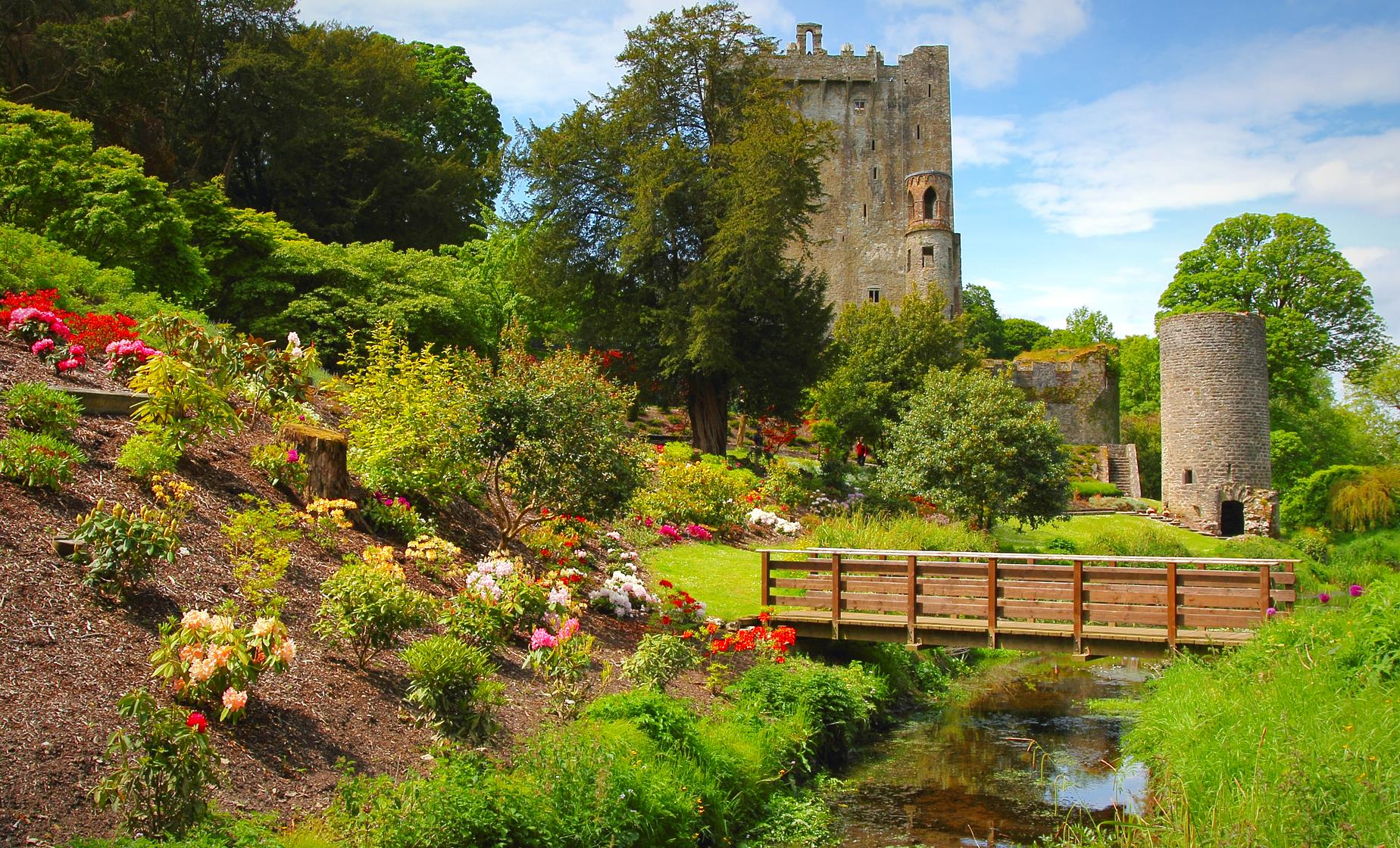 Private South of Ireland Tour in Cork (Blarney, Kinsale, Charles Fort)