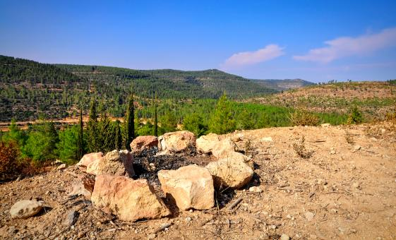 Private Safed, Kibbutz and the Golan Heights Tour from Haifa (Upper Galilee)
