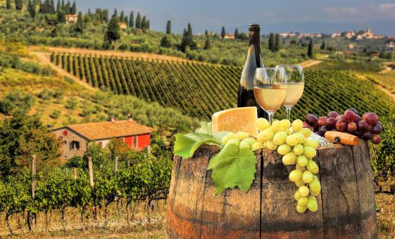 Private Chianti Wine District & San Gimignano Highlights Tour