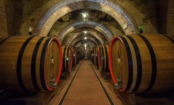 Tuscan Wine and Carriage Ride Tour