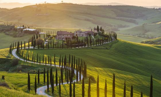 Full Day Tuscan Countryside and Wine Tasting