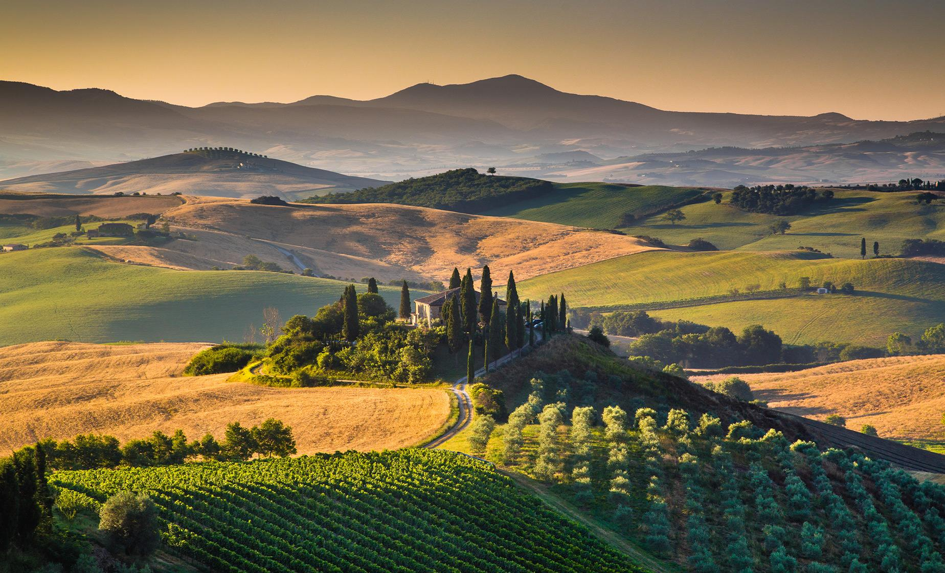 Private Tuscany Village & Wine Tasting Cruise Tour from Livorno