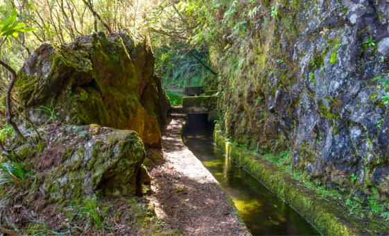 Quinta Grande And Levada Do Norte Walk
