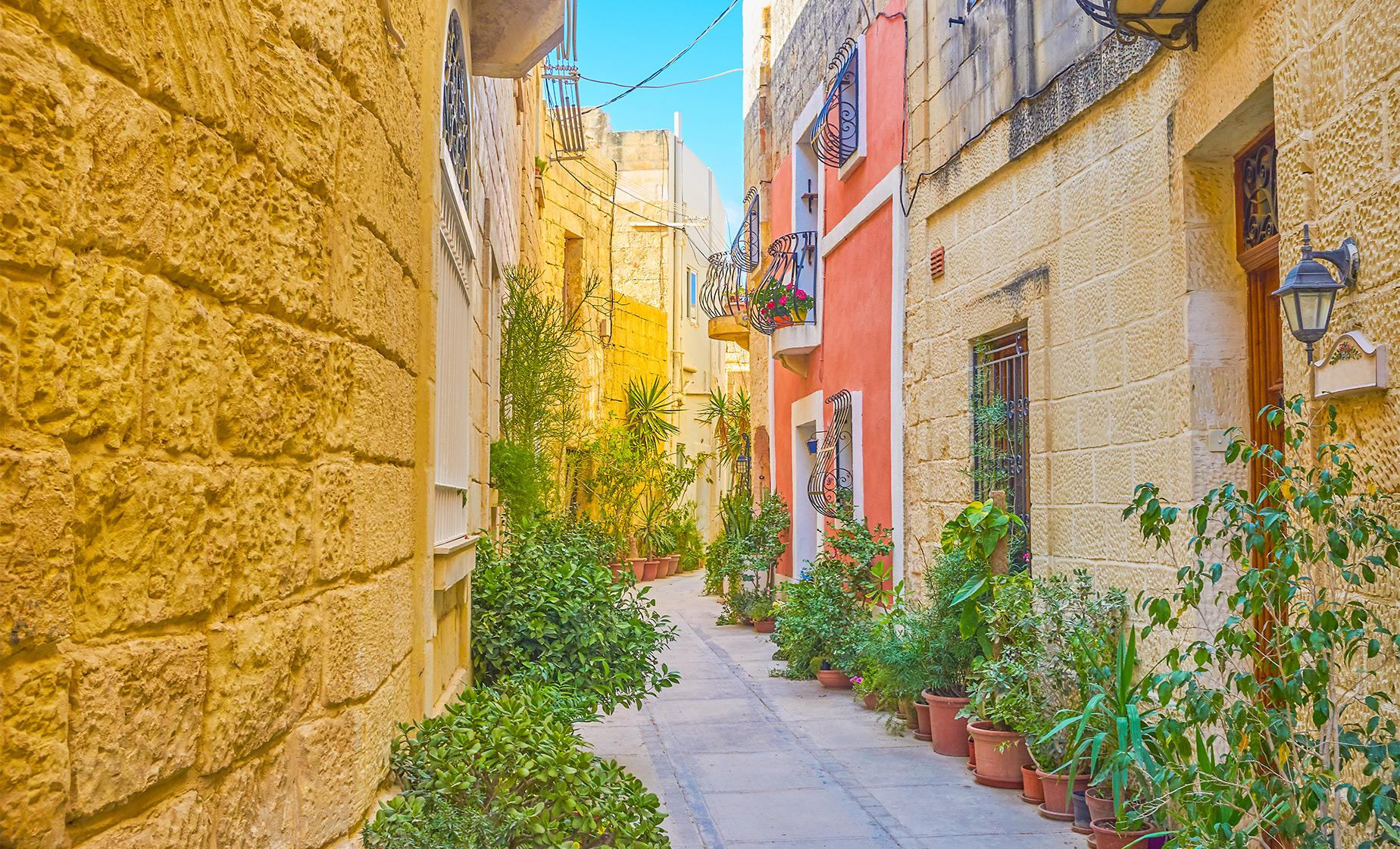 Private Maltese Historic Homes and Palazzos Private tour