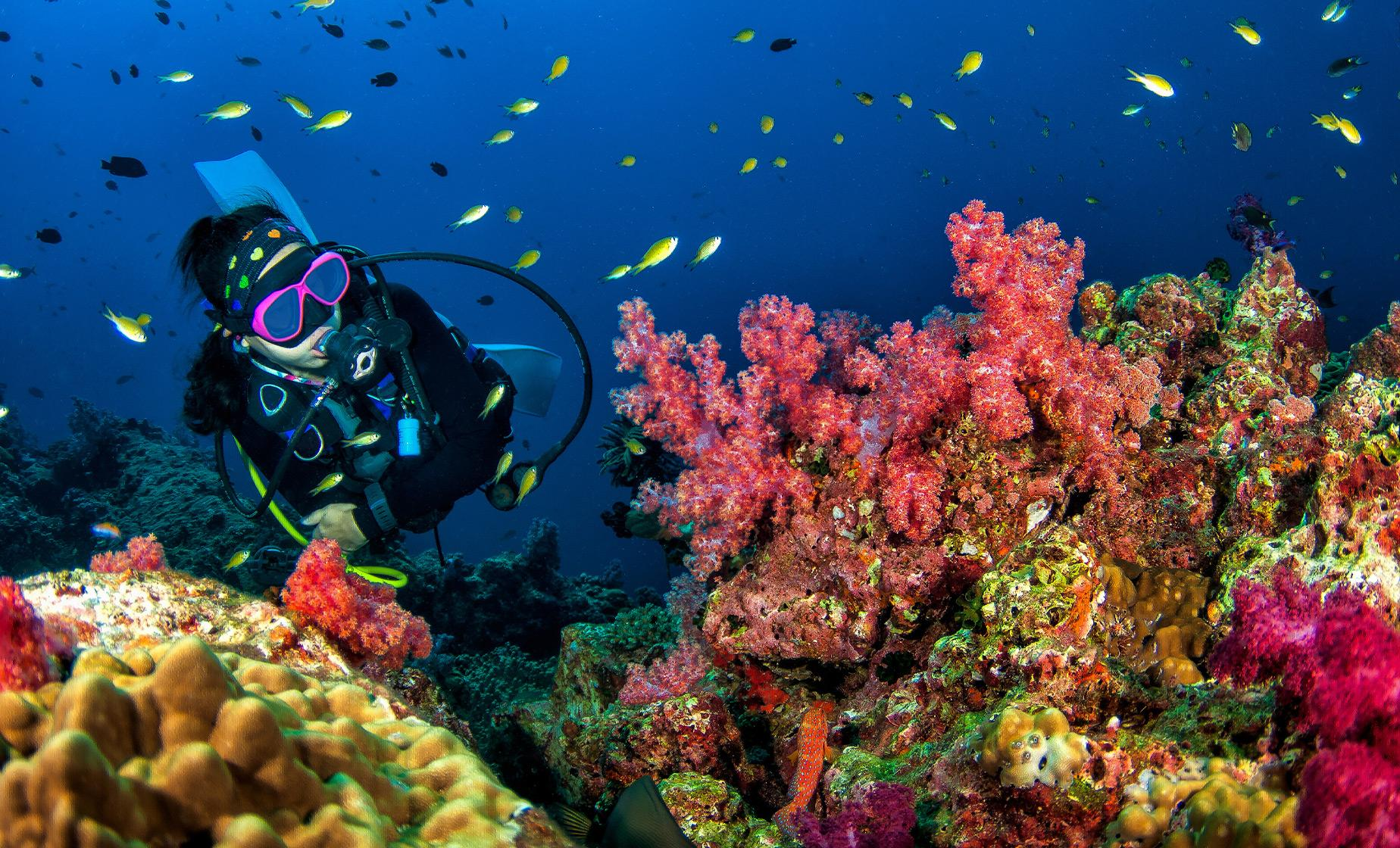 Marmaris Scuba Diving Trip