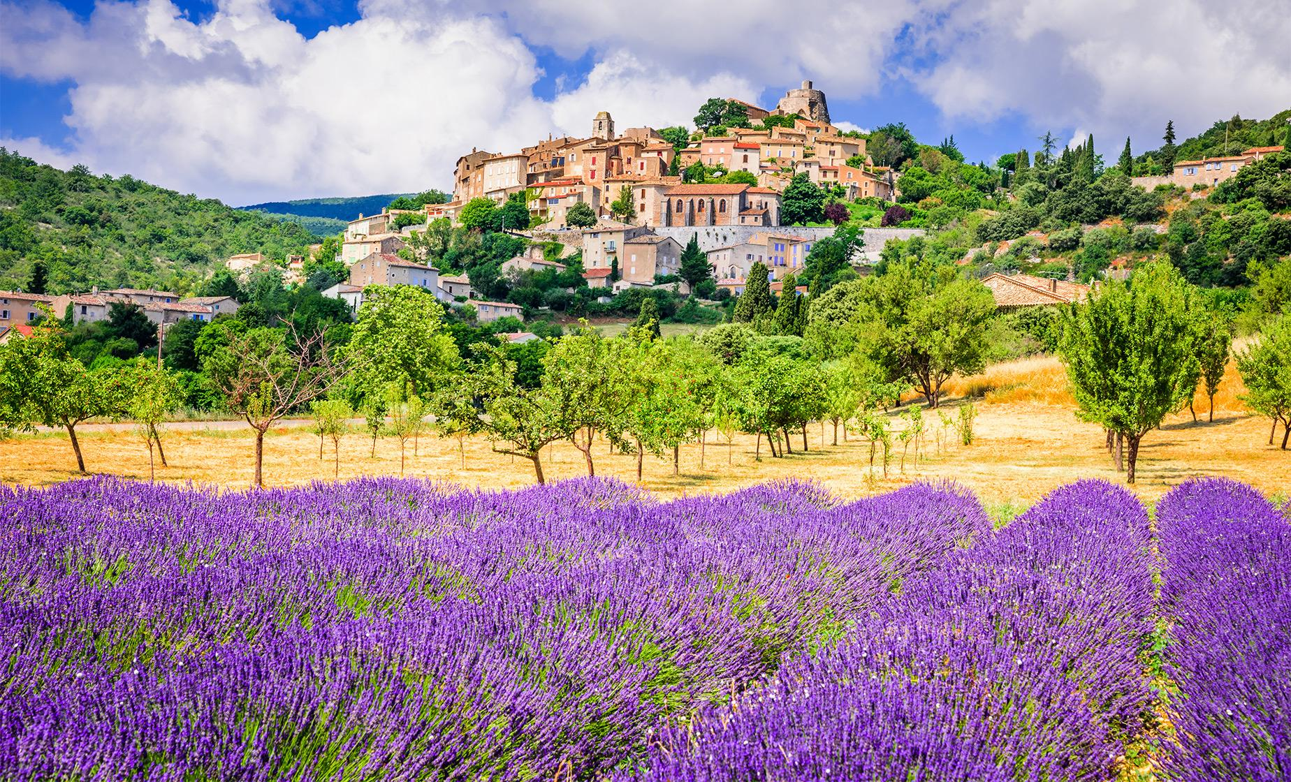 Private Full Day Luberon Village