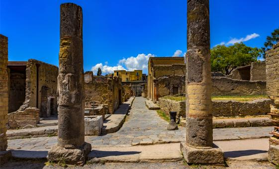 Herculaneum and Vesuvius On Your Own and Special Offer for Families