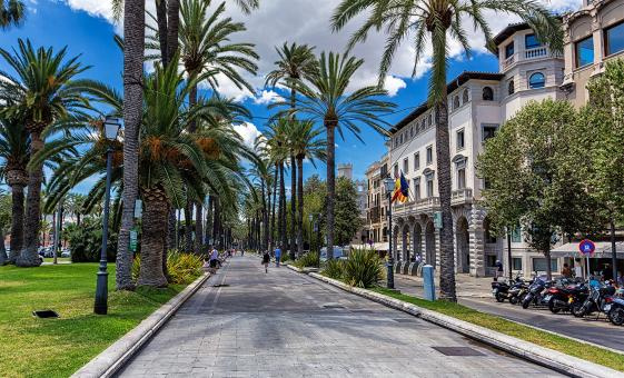 Discover Palma by Foot