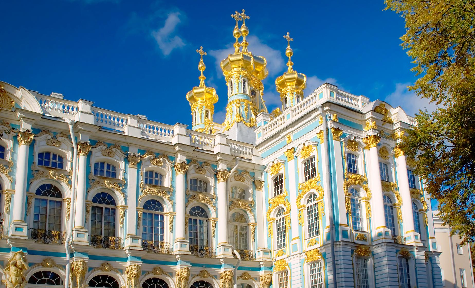Private Catherine's Palace and the Hermitage Tour from St. Petersburg (Pushkin) (Visas Included)