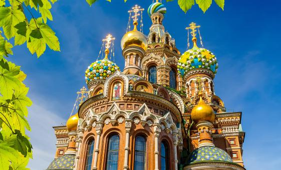 Private Hermitage and Spilled Blood Cathedral Tour in St. Petersburg (Visas Included)