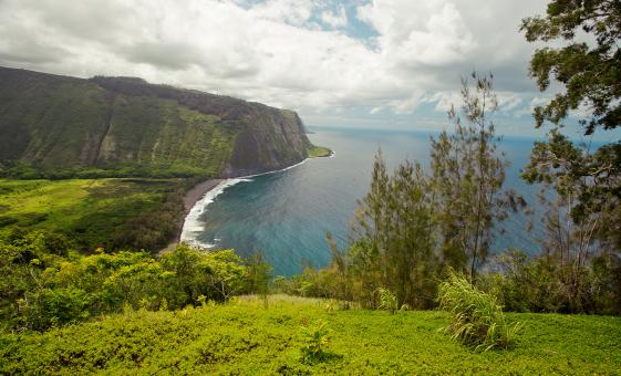 Hamakua Coast Sightseeing Cruise