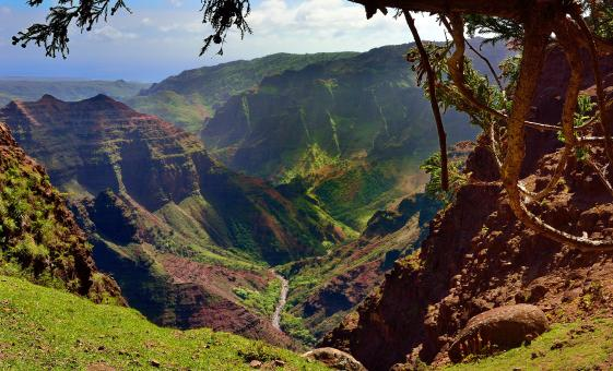 Waimea Canyon & Wailua River Tour in Kauai (Spouting Horn, Old Koloa Town)