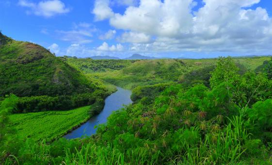 Wailua River Cruise and Fern Grotto Tour in Kauai (Wai'ale'ale Crater, Opaekaa Falls)