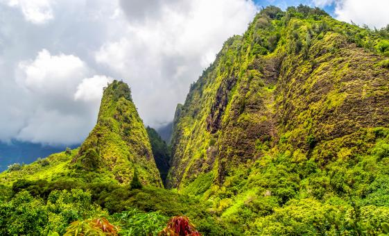 Iao Valley and Maui Tropical Tram Tour in Kahului (Iao Needle)