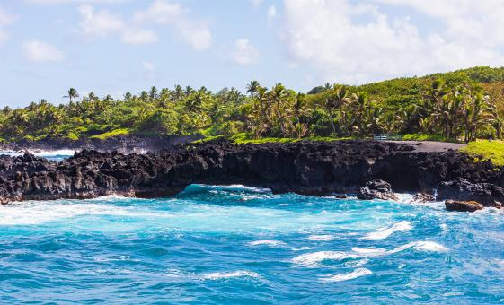 Hawaii Cruise Shore Excursions in Maui Kahului | Hana Beach Picnic Scenic in Maui Kahului