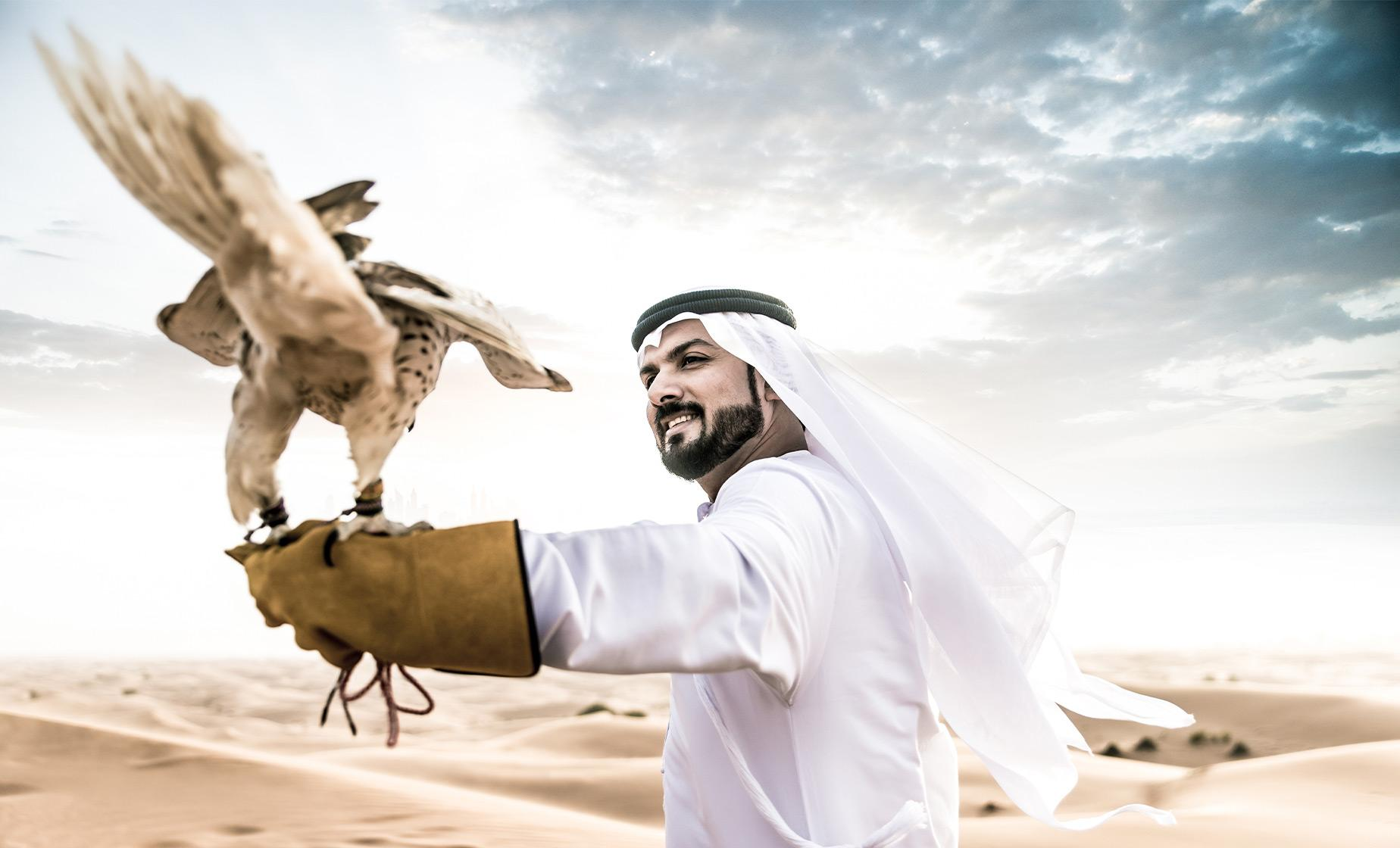 Evening Desert Safari Tour with BBQ Dinner & Falcon Experience