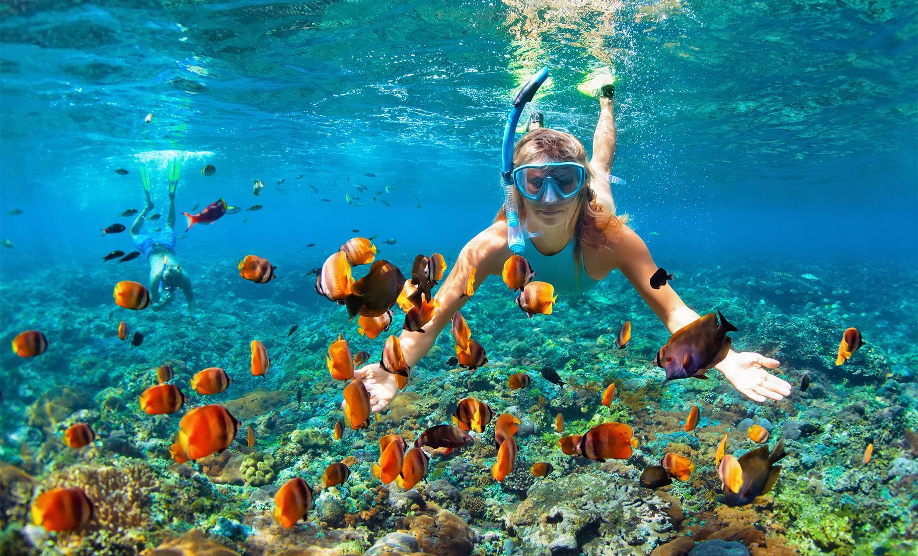 Acapulco Snorkeling Adventure