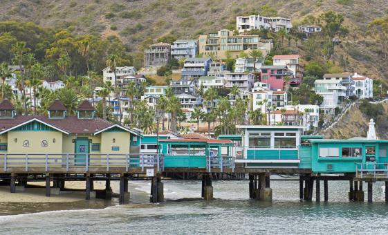 Amazing Scavenger Hunt Golf Cart Tour on Catalina Island (Avalon)