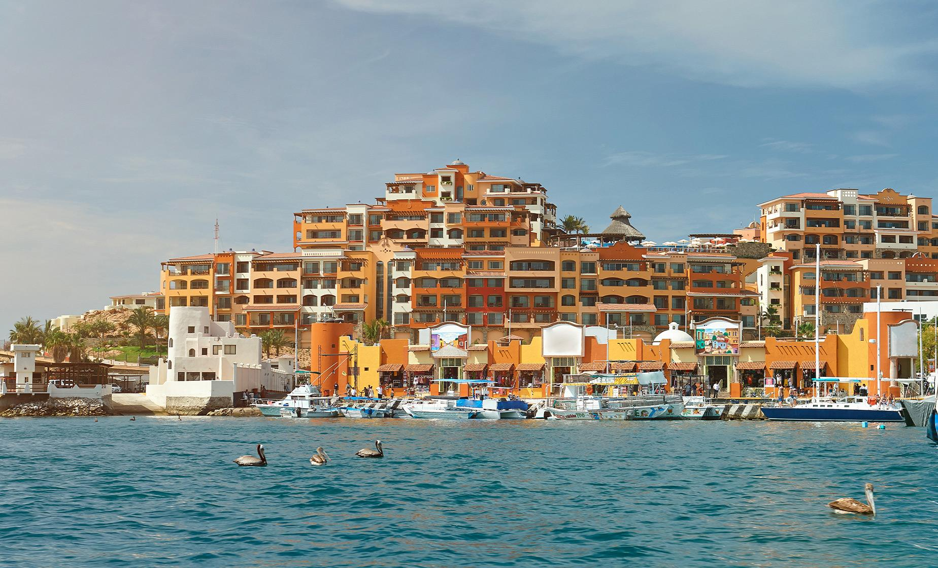 Cabo San Lucas City Tour and Glass Bottom Boat