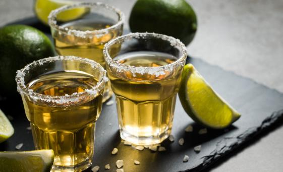 Private Tequila Tasting and City Tour