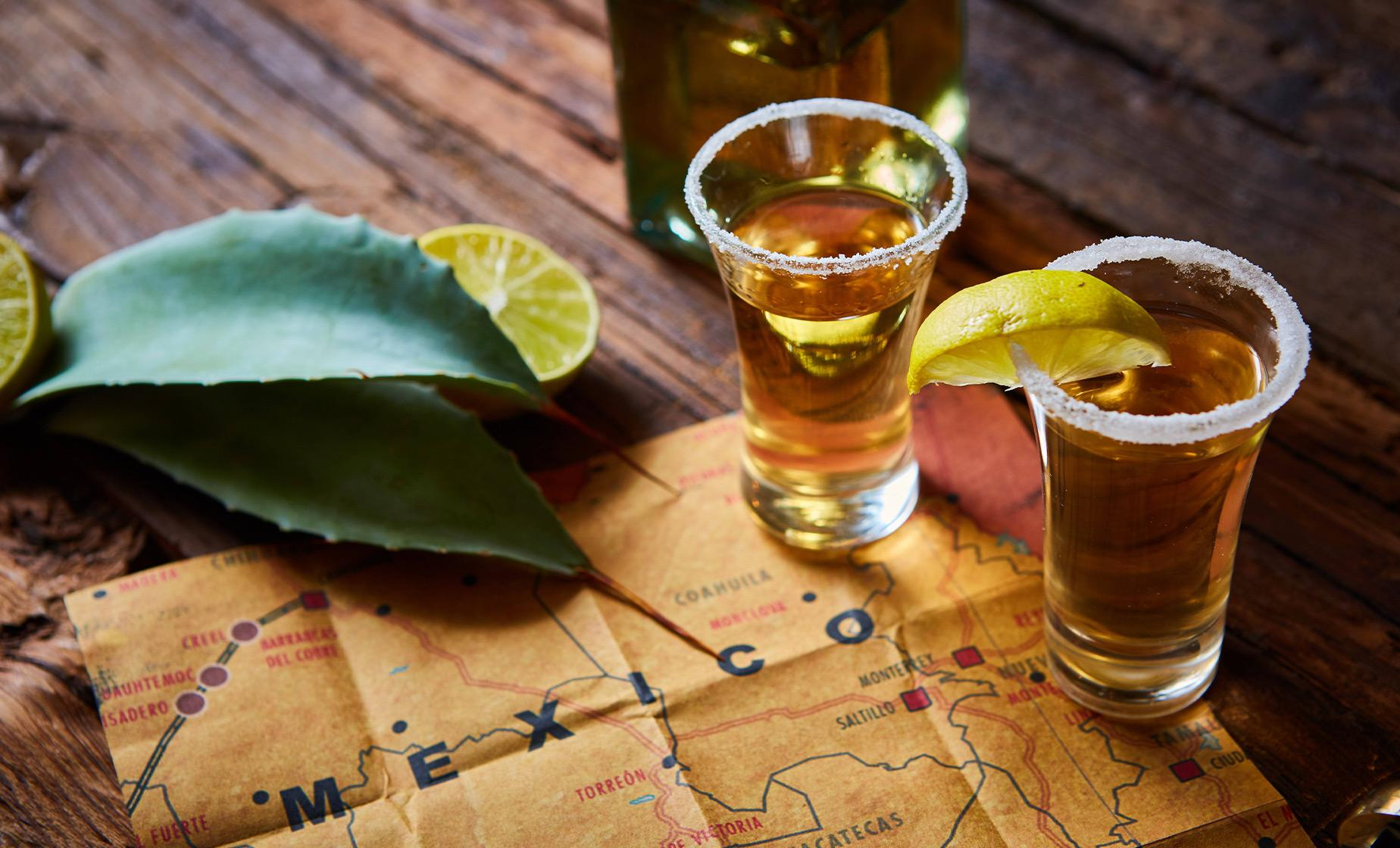 La Noria Blue Agave and Traditions Tour in Mazatlan (Vinata San Clara)