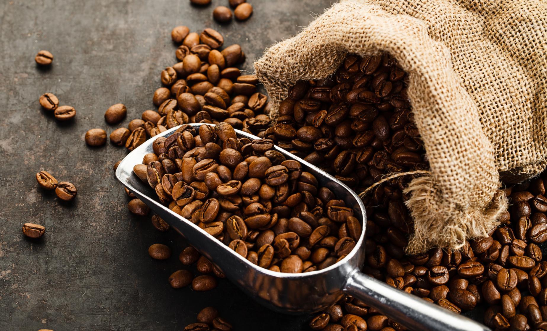 Private Puerto Chiapas Coffee Tour