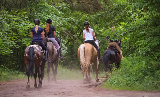 Horseback, River Swim and Tequila Tasting